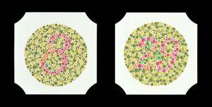Farbtafeln nach Ishihara, Buchformat, insgesamt 24 Tafeln
